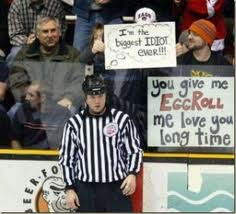 Referee in Minor League Hockey