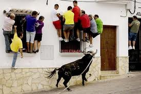 Running With The Bulls Funny Sports Picture