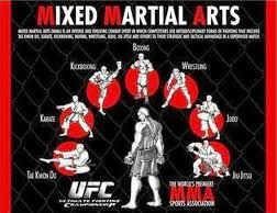 MMA Types of Combat