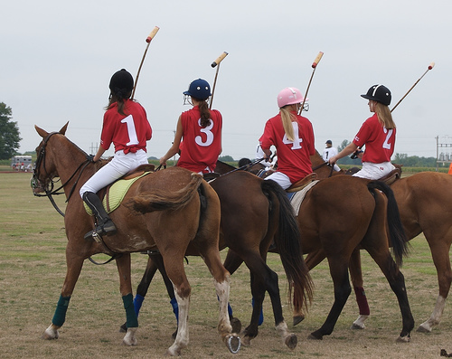 Polo Girls on Horses