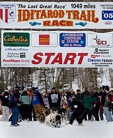 The Sports Archives Blog - The Sports Archives - Iditarod Sled Race: The Last Great Race On Earth!