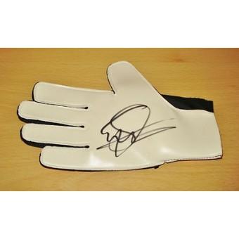 edwin van der sar hand signed goalkeeper goalie glove