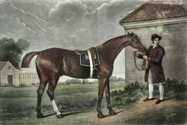 Eclipse an undefeated British racehorse and outstanding sire.