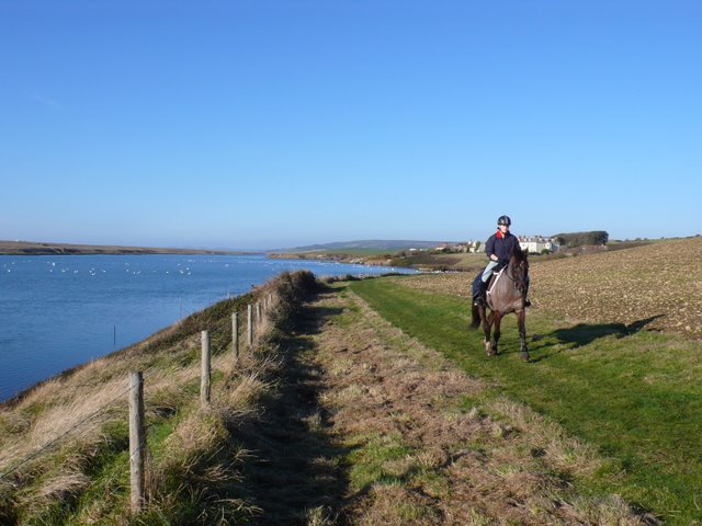 Horse Riding by the Water