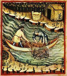 Fishing, tacuinum sanitatis casanatensis