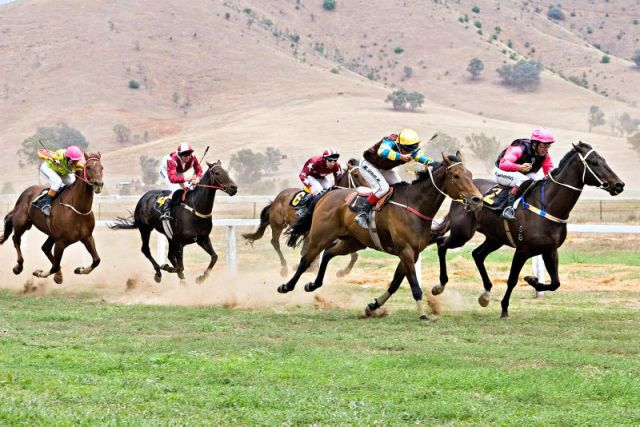 Tambo valley races 2006