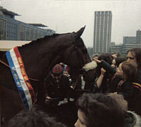 Red Rum at Castle Park, Bristol 1980