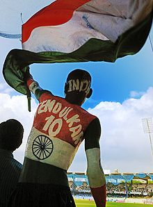 A Cricket fan at the Chepauk stadium, Chennai
