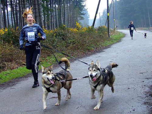 Racheal Bailey of Akna K9 Academy with two of her running dogs