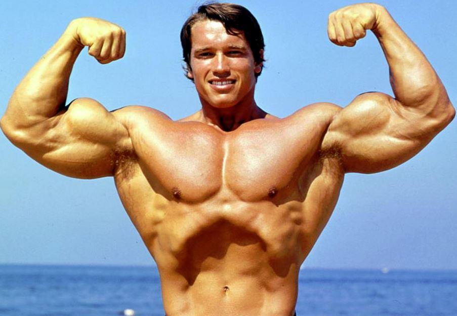 bigger biceps