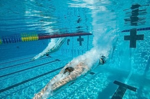 The Sports Archives Blog - The Sports Archives  Competitive Swimming