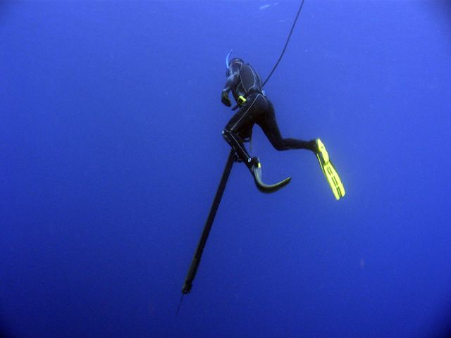 The Sports Archives Blog - The Sports Archives - 5 Great Spearfishing Tips For Beginners